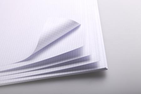 clairefontaine 33017c rame de 125 feuilles de papier bristol extra blanc quadrill 5x5 205 g. Black Bedroom Furniture Sets. Home Design Ideas